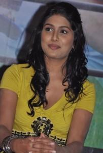 Manisha Yadav Hot Stills in Yellow Dress At At Jannal Oram Movie Press Meet