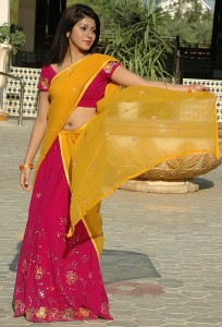 Prathista Hot Navel Photos in Half Saree