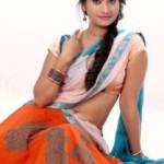 Priyanka Pallavi Hot Navel Photos in Half Saree