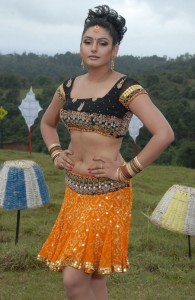 Actress Ragini Dwivedi Hot Navel Show Images From Villan Kannada Movie