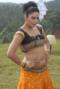 Ragini Dwivedi Navel Pics in Villan Movie