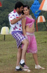 Ragini Dwivedi Hot Navel Photos in Villan Movie