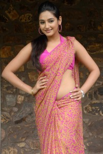 Kannada Actress Ragini Dwivedi Hot Saree Pictures