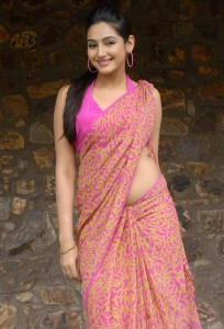 Ragini Dwivedi Sexy Images in Saree