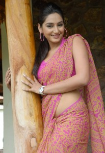 Actress Ragini Dwivedi Hot Saree Photos Gallery