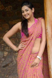 Ragini Dwivedi Hot Saree Photos Gallery