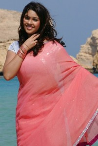 Actress Richa Gangopadhyay Hot Pics in Transparent Saree