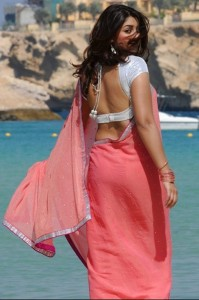 Richa Gangopadhyay Photos in Transparent Saree