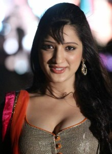 Richa Panai Latest Hot Cleavage Show Pics