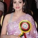 Sada Saree Photos At Amma Young India Awards 2014