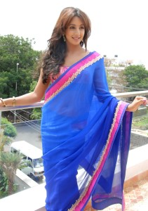 Sanjana Sexy Navel Show Images in Saree