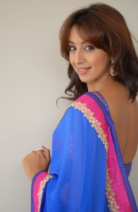 Sanjana Hot Sexy Images in Transparent Saree