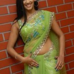 Sanjana Singh Hot Navel Photos in Transparent Saree