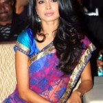 Sarah Jane Dias Photos At Panjaa Movie Audio Launch