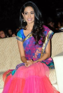 Sarah Jane Dias Sexy Half Saree Images At Panjaa Movie Audio Release Function