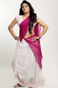 South Actress Sherin Hot Navel Show Images in Half Saree