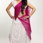 Sherin Hot Navel Photos in Half Saree