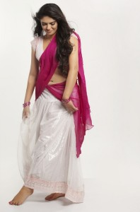 Sherin Sexy Navel Photos in Half Saree