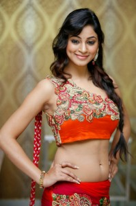 Shilpi Sharma Sexy Navel Pics At Trisha Pre Launch Fashion Show