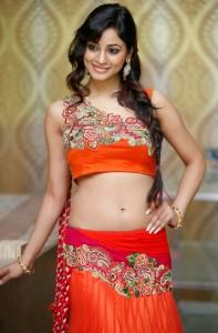 Shilpi Sharma At Trisha Pre Launch Fashion Show Stills