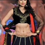 Shriya Saran Hot Navel Photos At SIIMA Awards