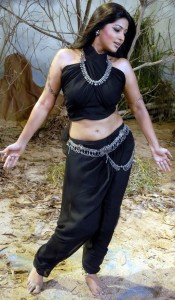 Sneha Hot Navel Pics