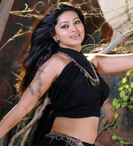 Sneha Hot Sexy Navel Show Images