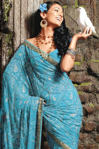 Sonal Chauhan Saree Picturues