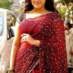 South Actress Namitha Sexy Saree Photos