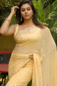Namitha Hot Pics in Transparent Saree