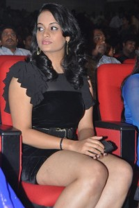 Suja Varunee Thighs Show Photos At Nagavalli Movie Audio Launch 8