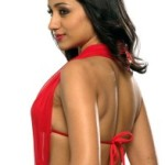 Trisha Hot Spicy Photoshoot Stills in Red Dress