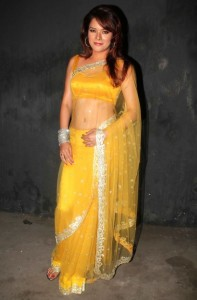 Udita Goswami Hot Navel Show Pictures in Transparent Yellow Saree