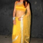 Udita Goswami Hot Navel Photos in Transparent Saree