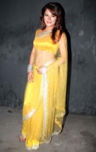Udita Goswami Sexy Navel Images in Transparent Saree