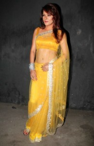 Udita Goswami Hot Navel Photos in Saree