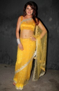 Udita Goswami Spicy Navel Stills in Transparent Saree
