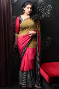 Tamil Actress Vanitha Vijaykumar Hot Saree Pictures