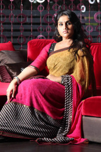 Vanitha Vijaykumar Photoshoot Photos in Saree