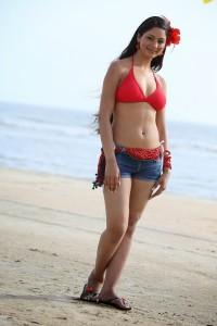 Shilpi Sharma Bikini Stills At Beach in Green Signal Movie