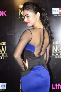 Sonal Chauhan in Blue Dress At Life OK Now Awards 2014