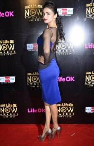 Sonal Chauhan At Life OK Now Awards 2014 Photos