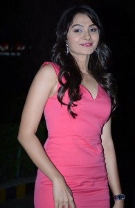Andrea Jeremiah Photos At Aranmanai Movie Audio Launch