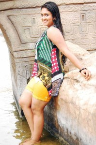 Roopika Sexy Images in Navarangi Movie