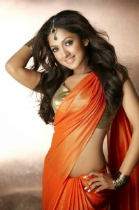 Sheela Photoshoot Stills in Saree